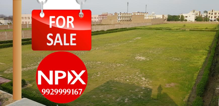 Farmhouse – Suratgarh road For Sale