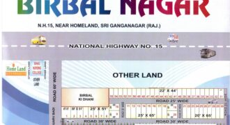Plot 25×65 For Sale in Birbal Nagar