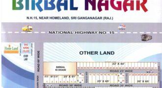Plot 25×65 For Sale in Birbal Nagar