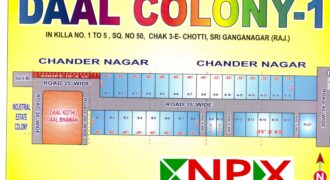 Plot 35×65 For Sale in Daal Colony – 1