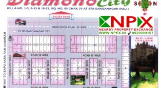 Plot 25×50 For Sale In Diamond City