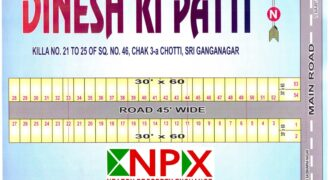 Plot 30×60 For Sale in DINESH KI PATTI ( Near Surjeet Singh Colony )