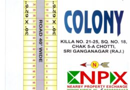 Residential Plot in Doctor Colony